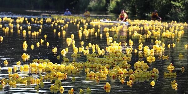 Duck Race 2021